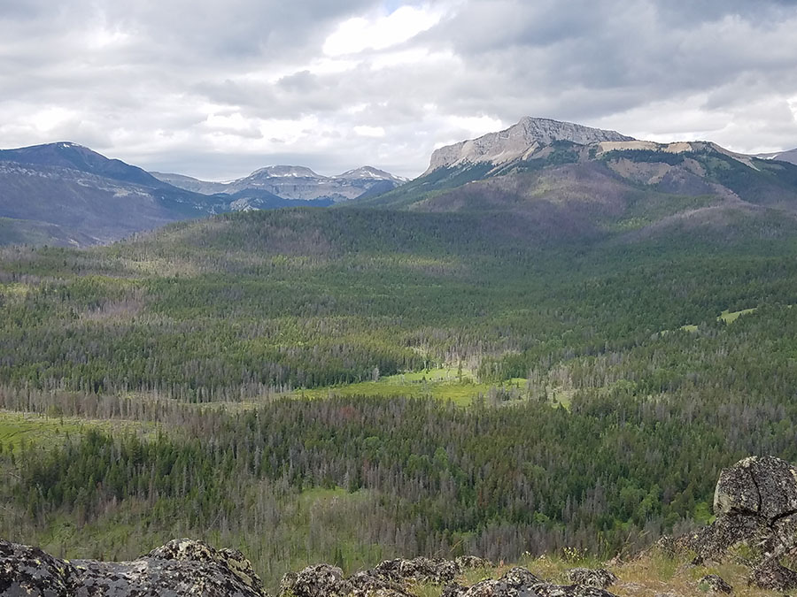 20190711_BobMarshallWilderness.jpg