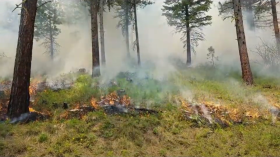 Payette-National-Forest-video.png