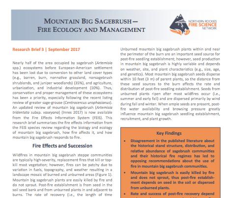 Market segmentation uk essay pdf