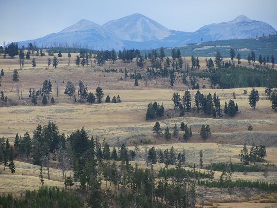 Yellowstone landscape view
